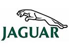 jaguar small